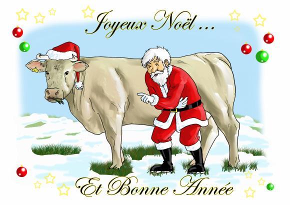 http://carinecow.cowblog.fr/images/cartesdevoeuxlesvachescharolaisesetlepere821806cartevachepenoele60c2big.jpg